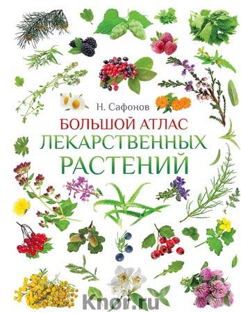 """Н.Н. Сафонов """"Большой атлас лекарственных растений"""""""