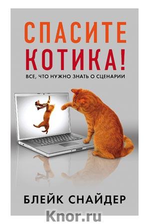"""Блейк Снайдер """"Спасите котика! Все, что нужно знать о сценарии"""" Серия """"Мастер сцены"""""""