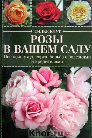 """Силке Клут """"Розы в вашем саду. Посадка, уход, сорта, борьба с болезнями и вредителями"""""""