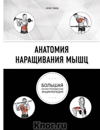 "Крэйг Рэмзи ""Анатомия наращивания мышц"" Серия ""Анатомия спорта"""