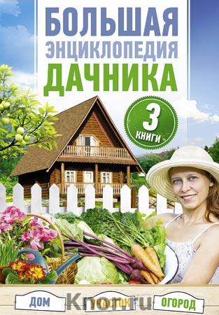 Большая энциклопедия дачника. Дом, участок, огород