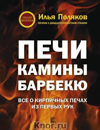 """Илья Поляков """"Печи, камины, барбекю"""" Серия """"Лидер мнения"""""""