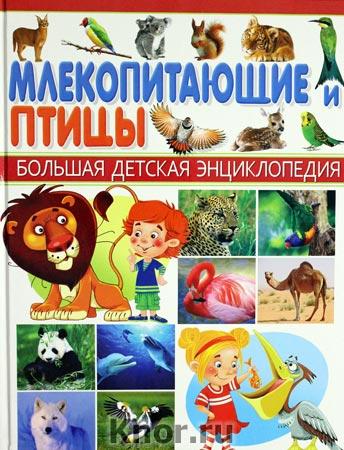 """Млекопитающие и птицы. Серия """"Большая детская энциклопедия"""""""