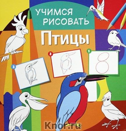 """Птицы. Серия """"Учимся рисовать"""""""