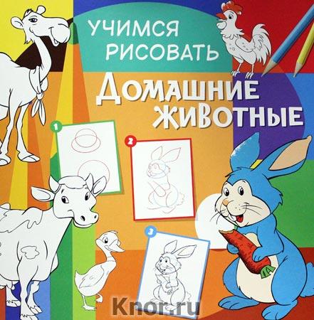 """Домашние животные. Серия """"Учимся рисовать"""""""
