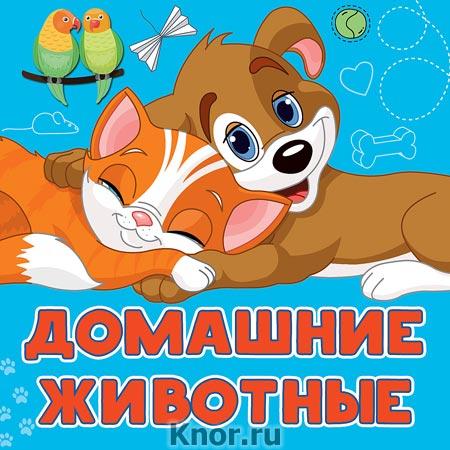 """Анна Игнатова """"Домашние животные"""" Серия """"Первые книжки-картинки"""""""
