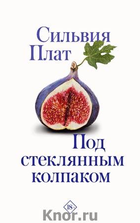 """Сильвия Плат """"Под стеклянным колпаком"""" Серия """"Разгадай меня"""""""