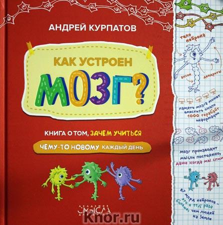 """Андрей Курпатов """"Как устроен мозг? Книга о том, зачем учиться"""""""