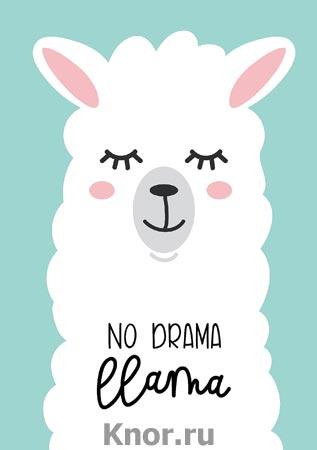 """Блокнот. Лама. No drama (формат А4, мягкая обложка, круглые углы, блок в точку). Серия """"Утренние страницы. Mindfulness"""""""