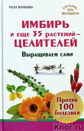 """Роза Волкова """"Имбирь и еще 35 растений целителей. Выращиваем сами. Против 100 болезней"""" Серия """"Сильнее чем женьшень"""""""
