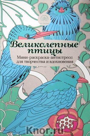 """Великолепные птицы. Мини-раскраска-антистресс для творчества и вдохновения. Серия """"Арт-терапия. Раскраски-антистресс"""""""