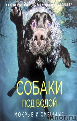"""Сет Кастил """"Собаки под водой. Мокрые и смешные. Кирпичики мироздания. Образы, пробуждающие чувства"""""""