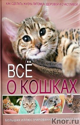 Все о кошках. Большая иллюстрированная энциклопедия