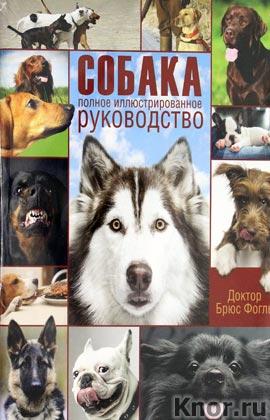 """Брюс Фогль """"Собака. Полное иллюстрированное руководство"""""""