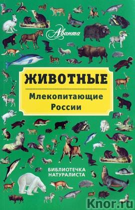 """В.Г. Бабенко """"Животные: млекопитающие России"""" Серия """"Библиотечка натуралиста"""""""