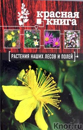 """А.А. Орел """"Красная книга. Растения наших лесов и полей"""" Серия """"Красная книга для больших и маленьких"""""""
