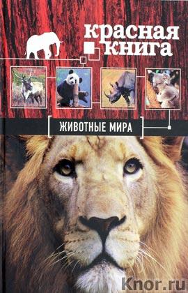 """О.В. Скалдина, Е.А. Слиж """"Красная книга. Животные мира"""" Серия """"Красная книга для больших и маленьких"""""""
