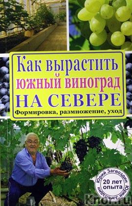 """Ю.М. Загвоздин """"Как вырастить южный виноград на севере"""" Серия """"Подворье"""""""
