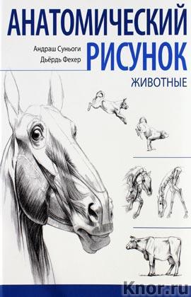 """Андраш Суньоги """"Анатомический рисунок. Животные"""""""
