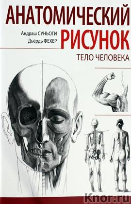 """Андраш Суньоги """"Анатомический рисунок. Тело человека"""""""