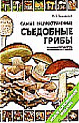 """М.В. Вишневский """"Самые распространенные съедобные грибы. Справочник-определитель грибника"""""""