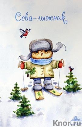 """Блокнот. Сова-лыжник (большой). Серия """"Блокноты. Совы Инги Пальцер"""""""