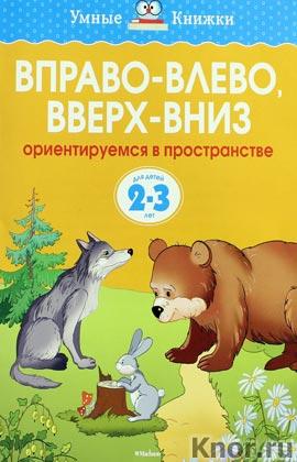 """Ольга Земцова """"Вправо-влево, вверх-вниз (2-3 года)"""" Серия """"Умные книжки"""""""