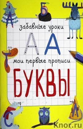 """Е.В. Смирнова """"Буквы"""" Серия """"Забавные уроки. Мои первые прописи"""""""