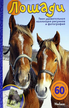 """Лошади. Серия """"Мои любимые животные"""""""