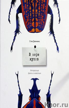 """Стиф Дженкинс """"В мире жуков. Интересные факты о животных"""""""