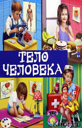"""В.И. Михердова """"Тело человека"""" Серия """"Первые знания. Книги на картоне с окошками"""""""