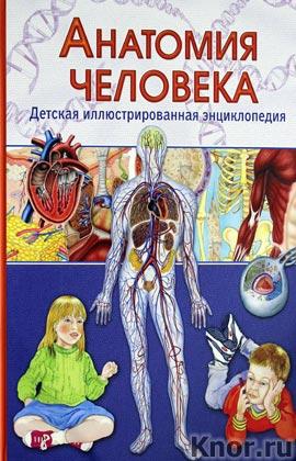"""В. Гуиди """"Анатомия человека. Детская иллюстрированная энциклопедия"""""""