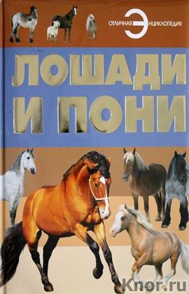 """Лошади и пони. Серия """"Отличная энциклопедия"""""""