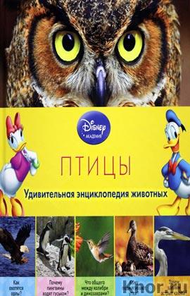 """Птицы. Серия """"Disney. Удивительная энциклопедия животных"""""""
