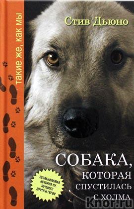 """Стив Дьюно """"Собака, которая спустилась с холма. Незабываемая история Лу, лучшего друга и героя"""" Серия """"Такие же, как мы"""""""