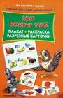"""Катя Матюшкина """"Мир вокруг тебя . Плакат, раскраска, разрезные карточки"""" Серия """"Три пособия в одном. Учебный комплект для малышей"""""""
